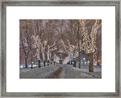 Commonwealth Ave Mall - Boston Framed Print