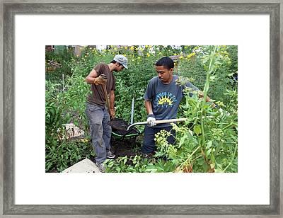 Community Garden Volunteers Framed Print