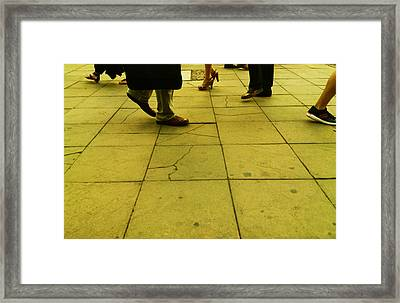 Community Framed Print by Lucy D