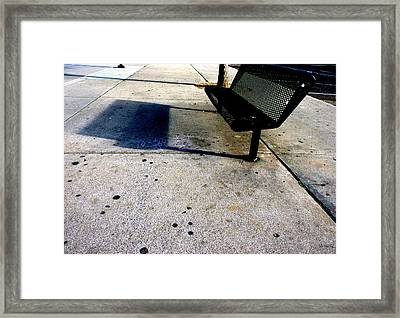 Companions Framed Print by Lin Haring