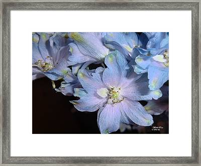 Compassion Limited Edition 2/33 Framed Print