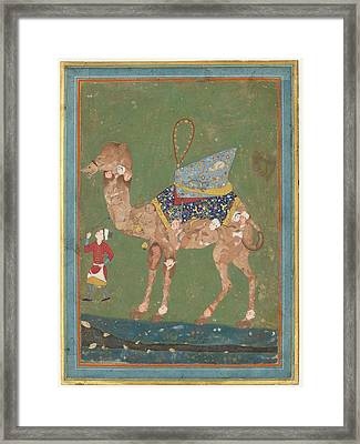 Composite Camel With Attendant Framed Print by Celestial Images