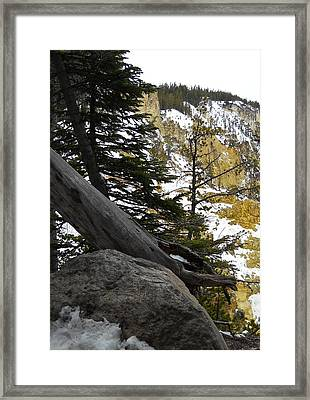 Framed Print featuring the photograph Composition At Lower Falls by Michele Myers