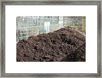 Compost Heap Framed Print