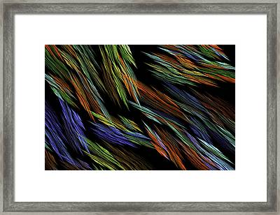 Computer Generated Art Fractal Flame Abstract Digital Image  Framed Print by Keith Webber Jr