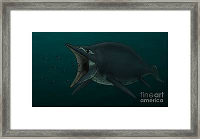 Concept Of The Suction Feeding Framed Print by Vitor Silva