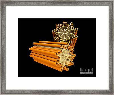 Conceptual Image Of Centriole Framed Print by Stocktrek Images