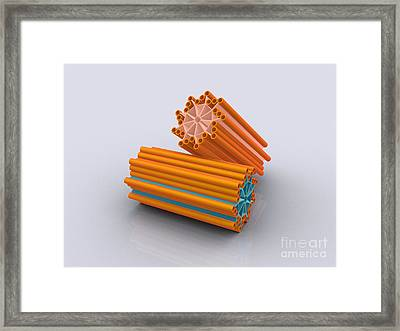 Conceptual Image Of Centrioles Framed Print by Stocktrek Images