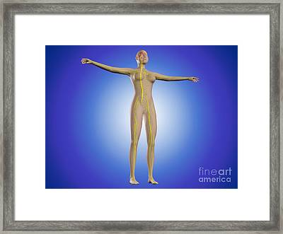 Conceptual Image Of Female Nervous Framed Print by Stocktrek Images