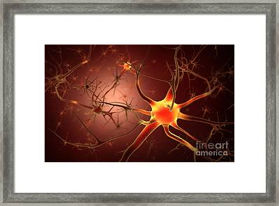 Conceptual Image Of Neuron Framed Print by Stocktrek Images