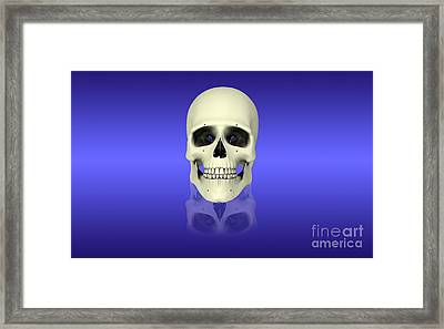 Conceptual View Of Human Skull Framed Print by Stocktrek Images