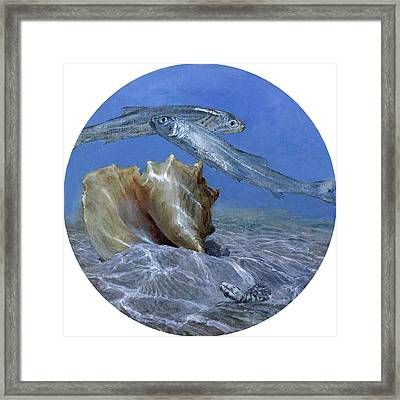 Conch And Ladyfish, 2001 Pair Framed Print by Stanley Meltzoff / Silverfish Press