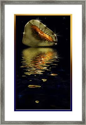 Conch Sparkling With Reflection Framed Print