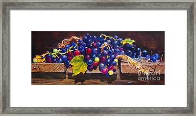 Concord Grapes On A Step Framed Print by Sarah Luginbill