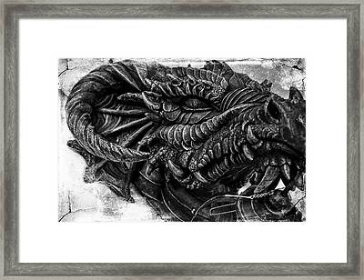 Concrete Dragon  Framed Print by Sheena Pike