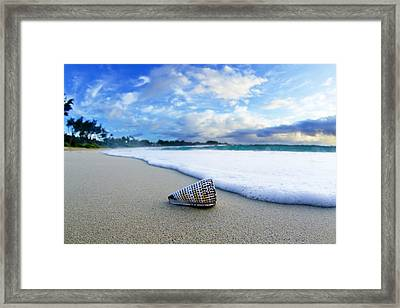 Cone Foam Framed Print by Sean Davey