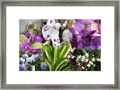 Confluent Flowers 1 Framed Print