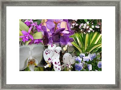 Confluent Flowers 2 Framed Print