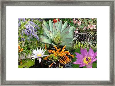 Confluent Flowers 5 Framed Print