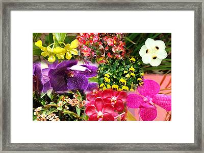 Confluent Flowers 9 Framed Print