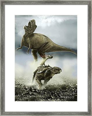 Confrontation Between A Club-tailed Framed Print