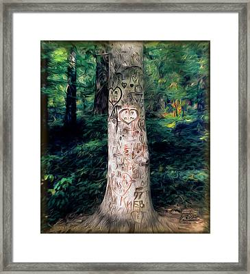 Congressional Woods Framed Print