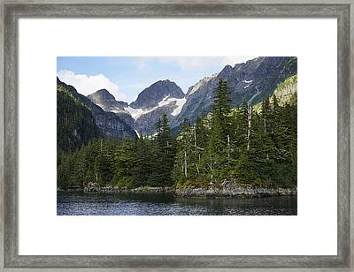 Conifer Forest Inside Passage Prince Framed Print by Hiroya Minakuchi