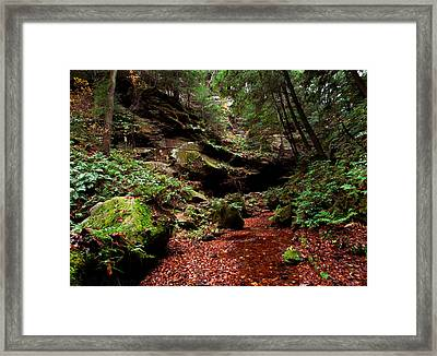 Framed Print featuring the photograph Conkles Hollow Gorge by Haren Images- Kriss Haren