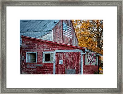 Connecticut Farmstand Framed Print by Thomas Schoeller