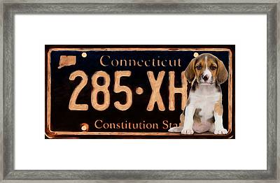 Connecticut License Plate Framed Print by Lanjee Chee