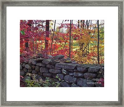 Connecticut Stone Walls Framed Print