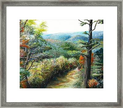 Connecticut Trail Framed Print