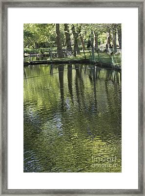 Connetquot Pond Framed Print