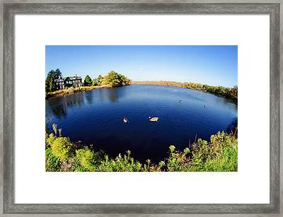 Connetquot River State Park Framed Print