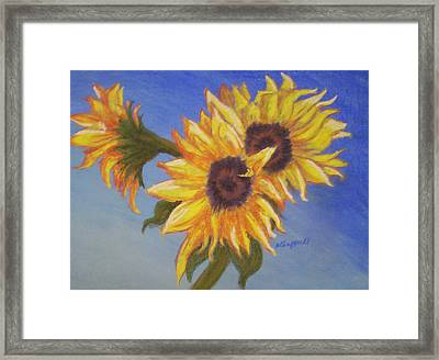 Connies Sunflowers Framed Print