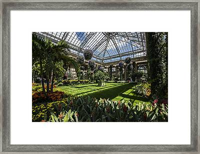 Conservatory Framed Print by Phil Abrams