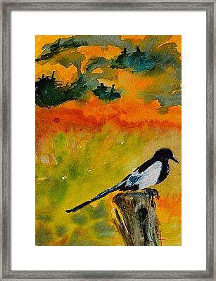 Consider Framed Print by Beverley Harper Tinsley