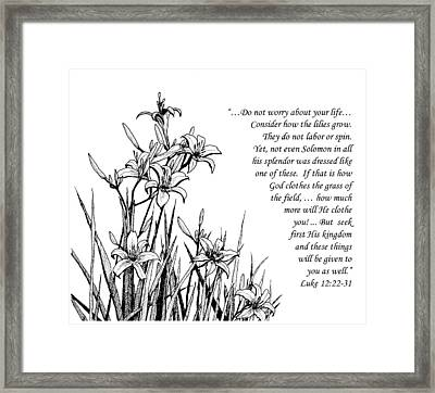 Framed Print featuring the drawing Consider How The Lilies Grow by Janet King
