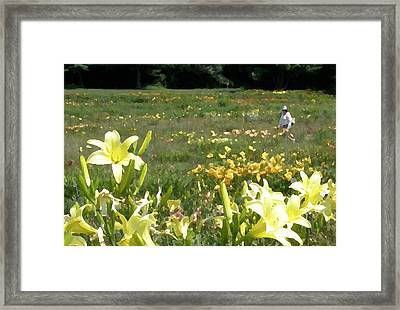 Consider The Lilies Of The Field Framed Print by Jean Hall