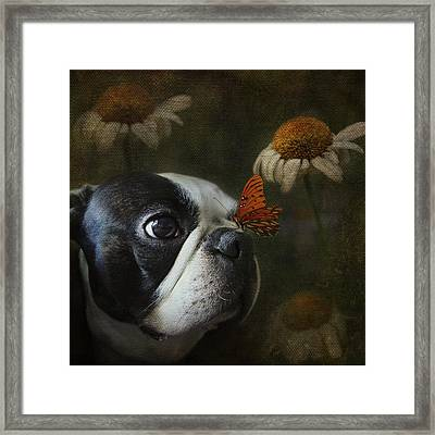 Framed Print featuring the photograph Constant Companion by Kathleen Holley
