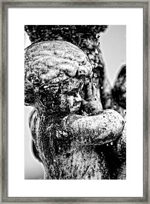 Constant Drip - Bw Framed Print by Christopher Holmes