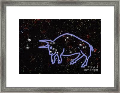 Constellation Of Taurus Framed Print