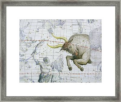 Constellation Of Taurus Framed Print by Sir James Thornhill