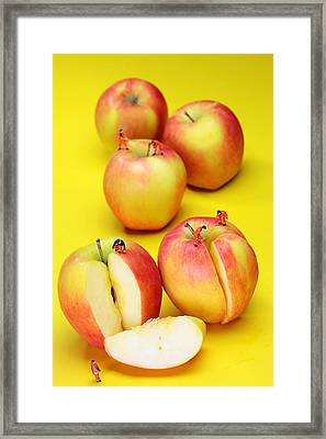 Construction Workers Choping Apples Miniature Art Framed Print by Paul Ge
