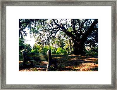 Framed Print featuring the photograph New Orleans Contemplating Solitude by Michael Hoard