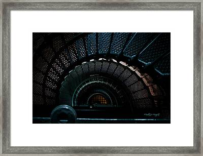 Contemplating The Fall Framed Print by Paulette B Wright