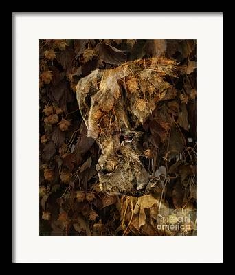 Judy Wood Framed Prints