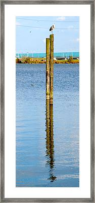 Contemplation Framed Print by Karen Weetman