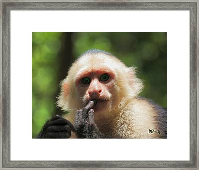Framed Print featuring the photograph Contemplation by Patrick Witz