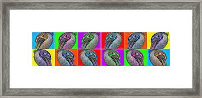 Contemporary Pelicans Framed Print